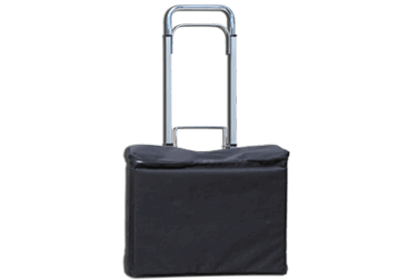 TROLLEY SECURITY BAG (Ithaca)